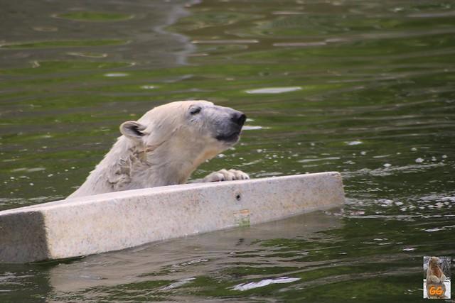 Besuch Tierpark 22.05.21011