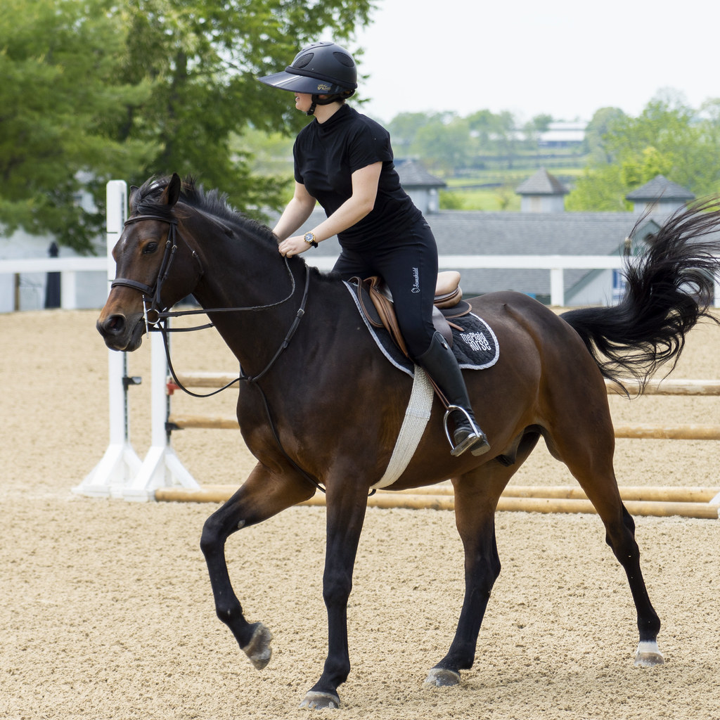 Schooling Ring Up to Speed
