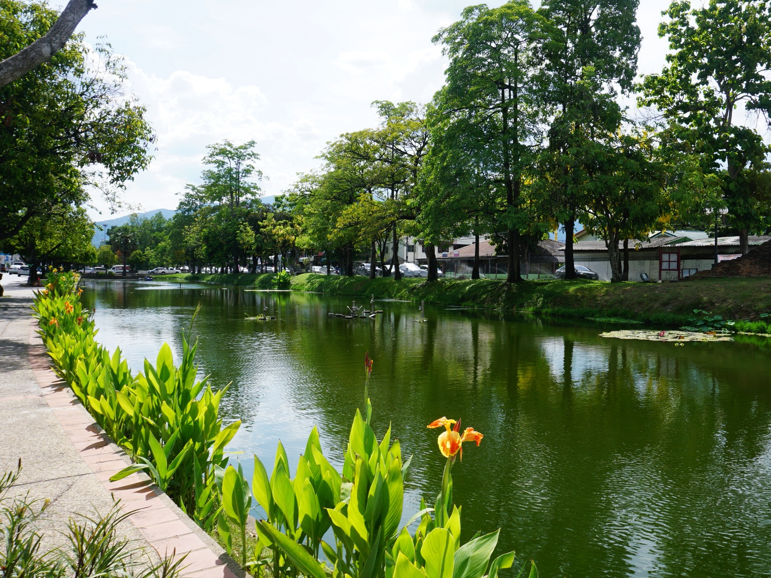 Chiang Mai old city moat