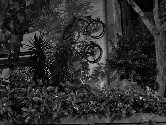 ride a bike and run away