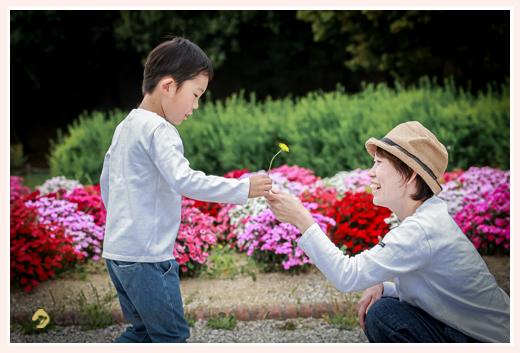 タンポポをママにプレゼントする少年