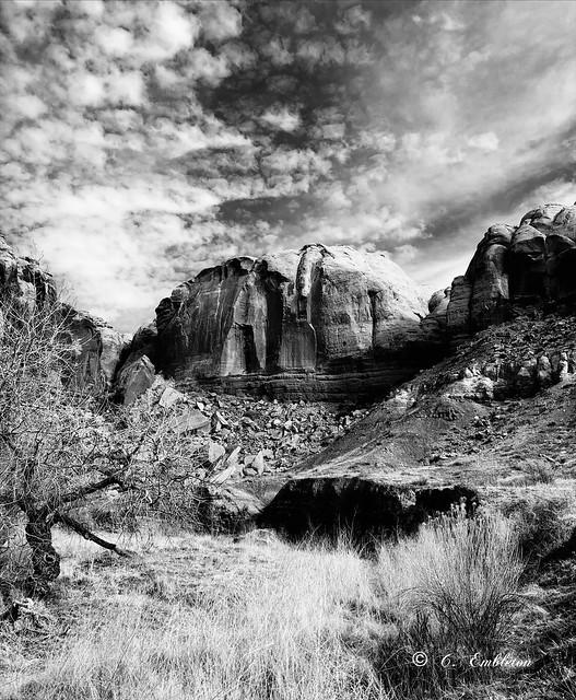 A side canyon near Cottonwood wash. (Explorer 6/4/2021)