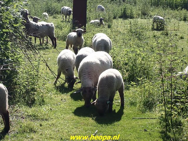 2021-06-02  Alemere-         Stichtsekant       25 Km  (35)