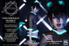 Astara - Hologram Huskey
