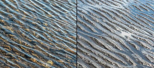 ever wonder how the ripples on the sand get their pattern?