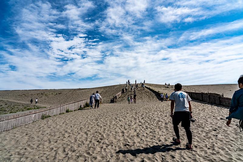 遠州灘の砂丘