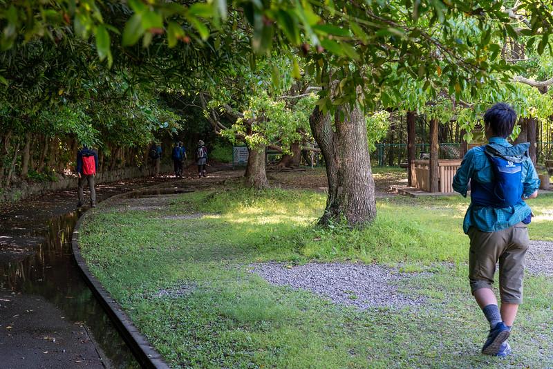 葦毛湿原の入口