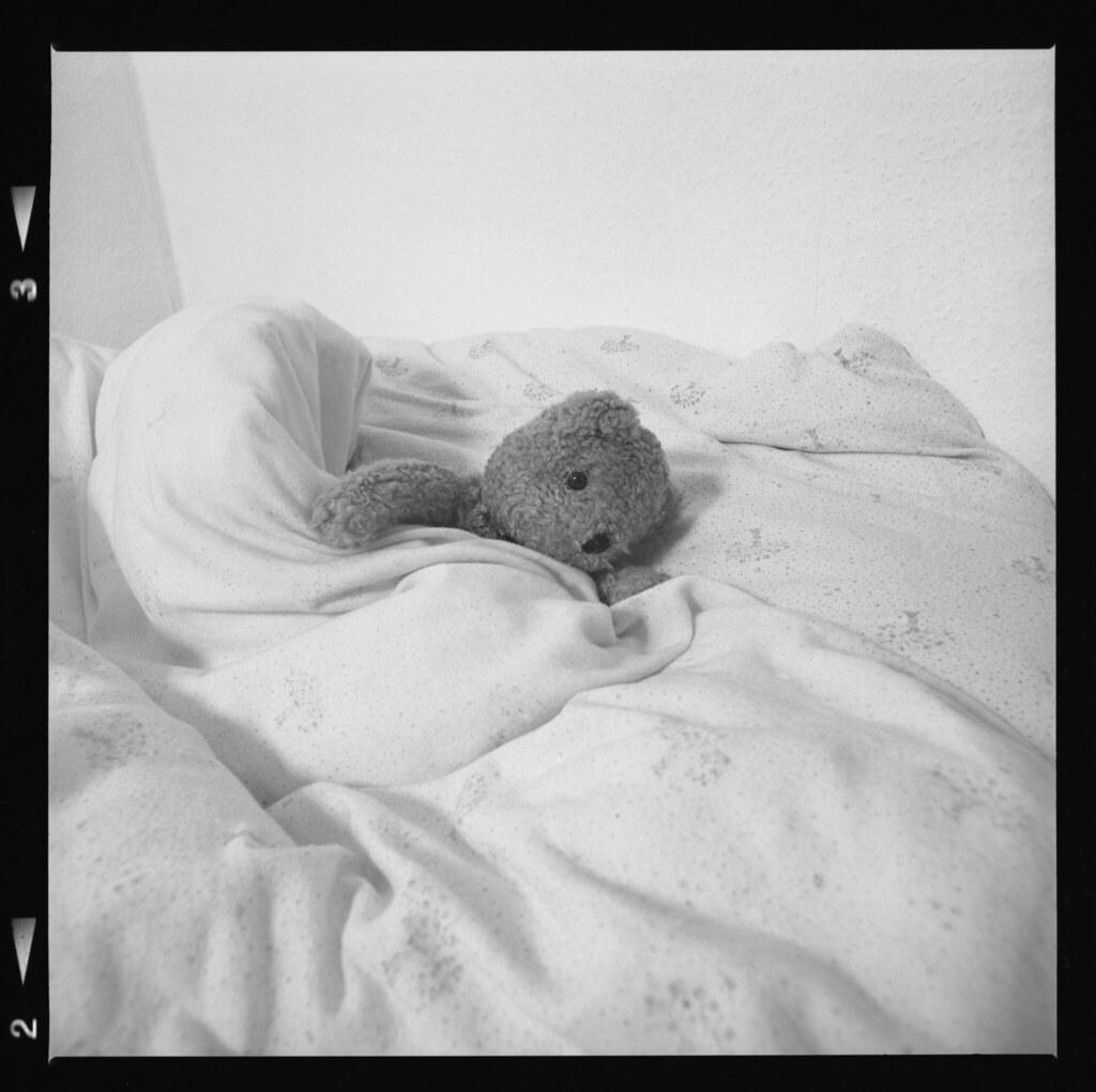 The bear goes to sleep. 1994