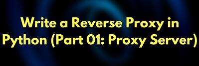 Write a Reverse Proxy  Server in Python: Part 1 (Reverse Proxy Server)