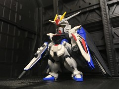 FW GUNDAM CONVERGE SP07 ZGMF-X10A Freedom Gundam (4)