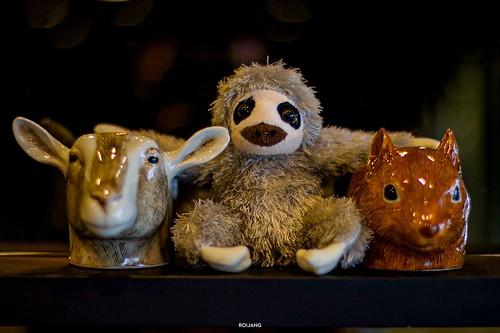 สล็อตชาบู ภูเก็ต Sloth Shabu