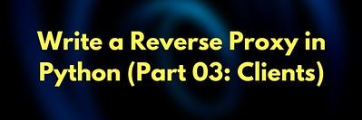Write a Reverse Proxy  Server in Python: Part 3 (Client-side Script)