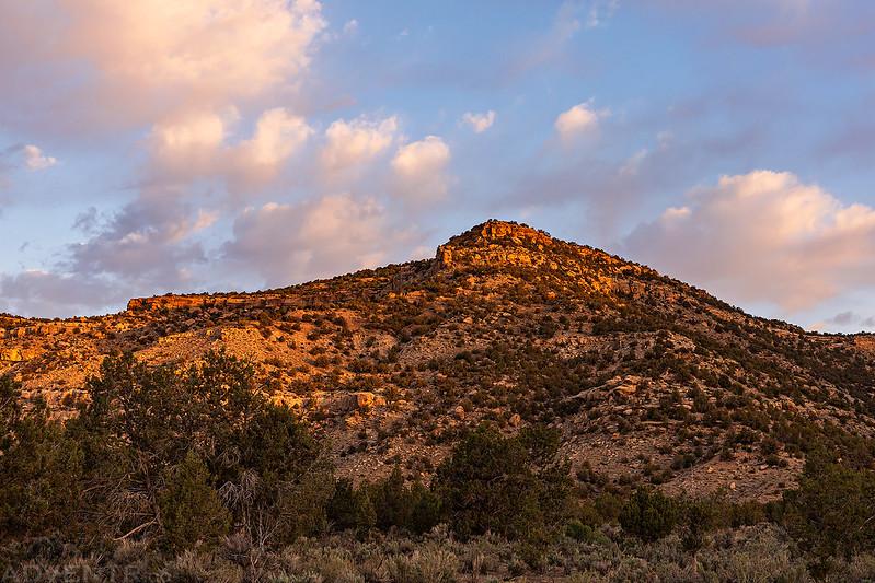 Mancos Canyon Morning