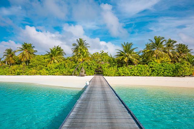 just Maldives