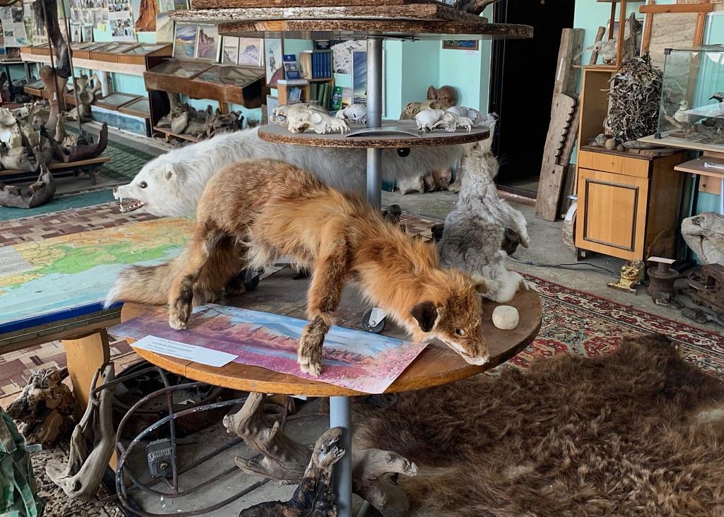 Музей Горностай в Тикси - самый интересный музей Якутии. IMG_7936