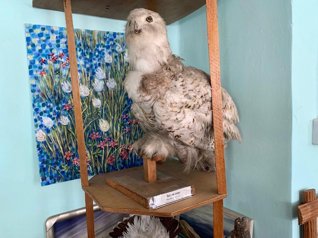 Музей Горностай в Тикси - самый интересный музей Якутии. IMG_7902