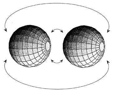 Figura 2. Una tre-sfera si può rappresentare come due palle incollate per il bordo, dove il bordo è costituito dalla superficie delle sfere