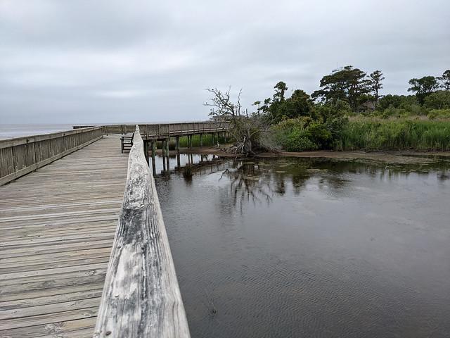Duck boardwalk