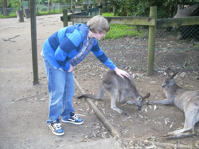 Rick and Kangaroo