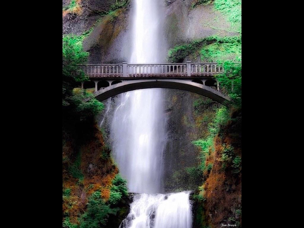 'Multnomah Falls Bridge'