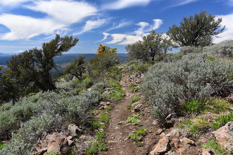 Lookout Mountain hike