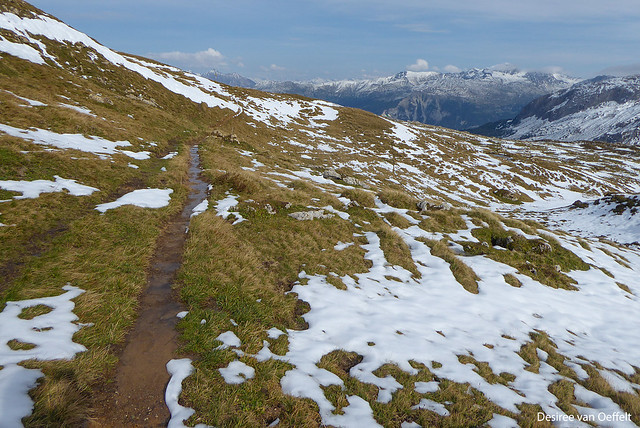 Snow melting, paths are getting wet and slippery