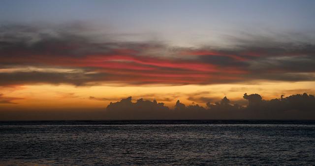 Mauritius Tamarin III