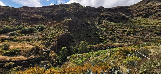 Senderismo Barranco de las Boticarias Gran Canaria 04