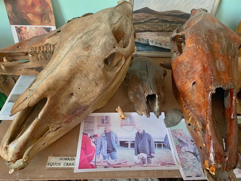 Музей Горностай в Тикси - самый интересный музей Якутии. IMG_7951