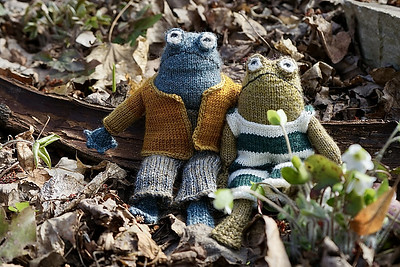 I am planning to cast Frog and Toad on my needles for my grandson's birthday gift! This is Phaito's Frog and Toad that she knit using leftover stash!