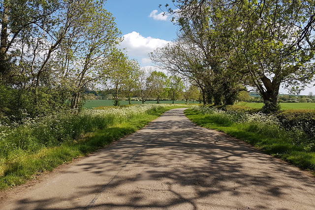 Country road near Brixworth