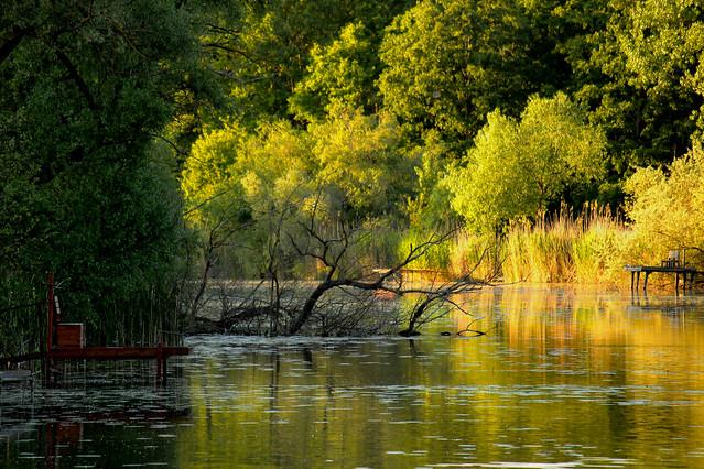 Late afternoon by the river / Késő délután a folyónál