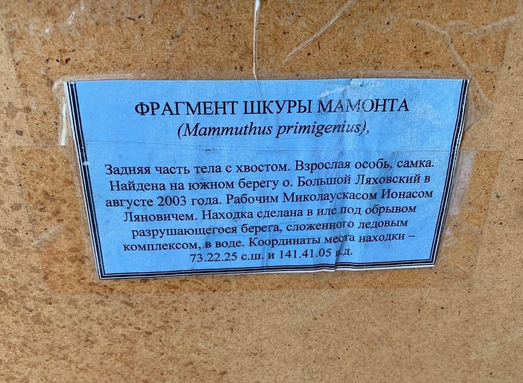 Музей Горностай в Тикси - самый интересный музей Якутии. IMG_7920