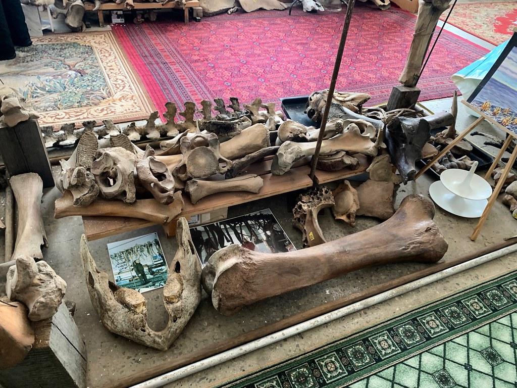 Музей Горностай в Тикси - самый интересный музей Якутии. IMG_7898