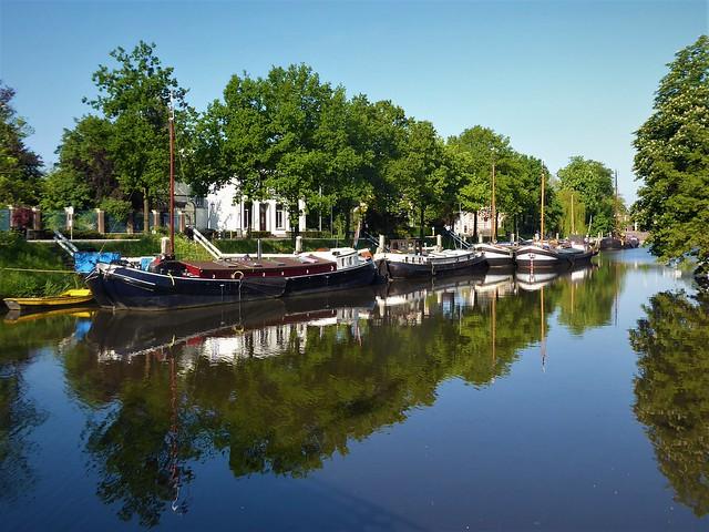 Zwolle, Burg. van Royensingel