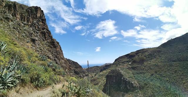 Senderismo Barranco de las Boticarias Gran Canaria 11