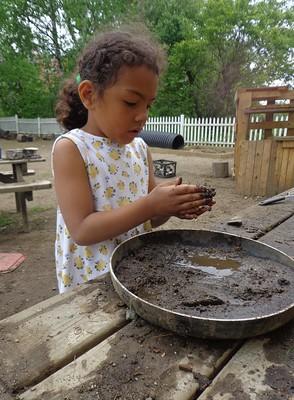 mud in the pan