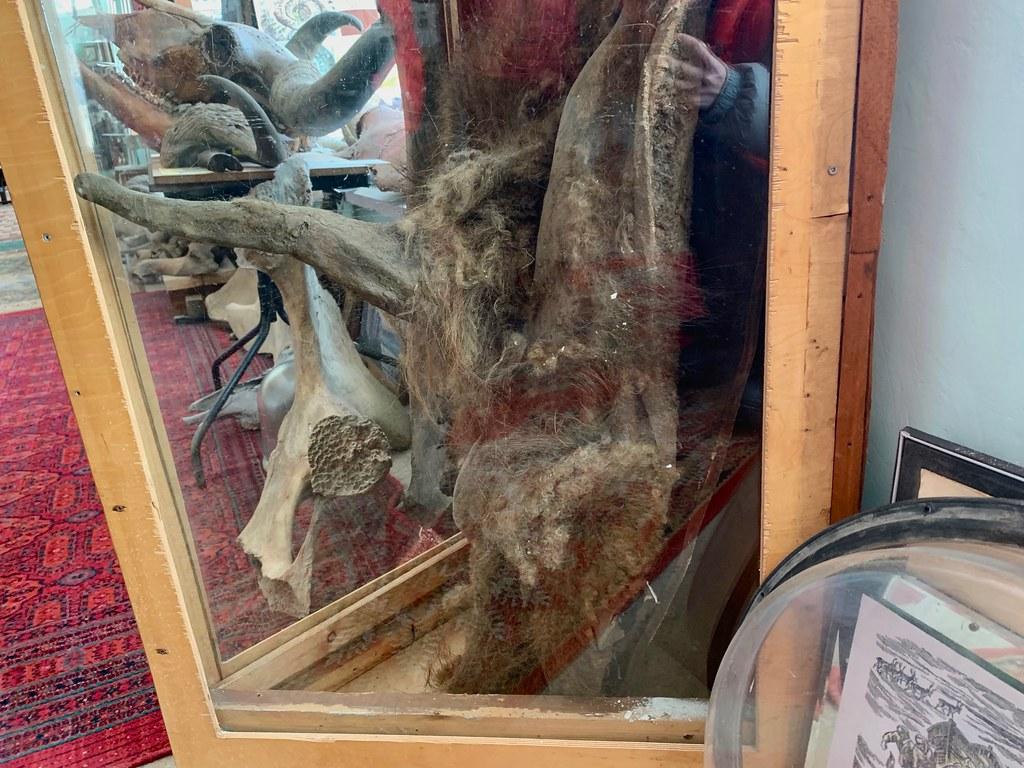 Музей Горностай в Тикси - самый интересный музей Якутии. IMG_7911