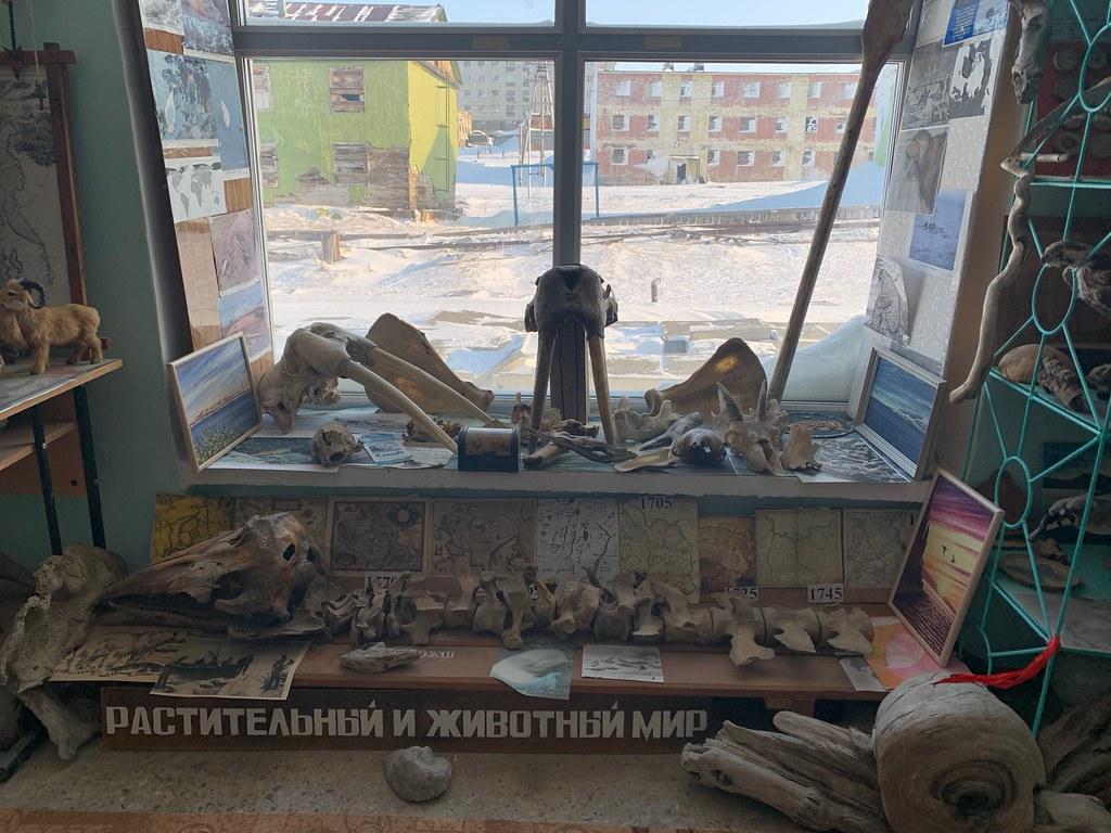 Музей Горностай в Тикси - самый интересный музей Якутии. IMG_7905
