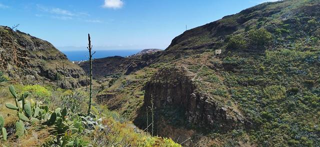 Senderismo Barranco de las Boticarias Gran Canaria 12