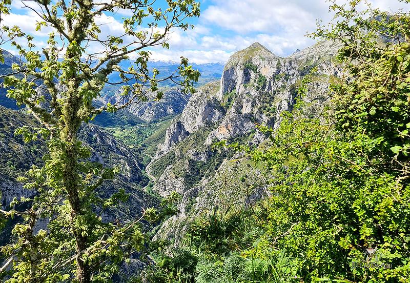 Senda Mitológica y mirador de Santa Catalina en Cantabria (29)