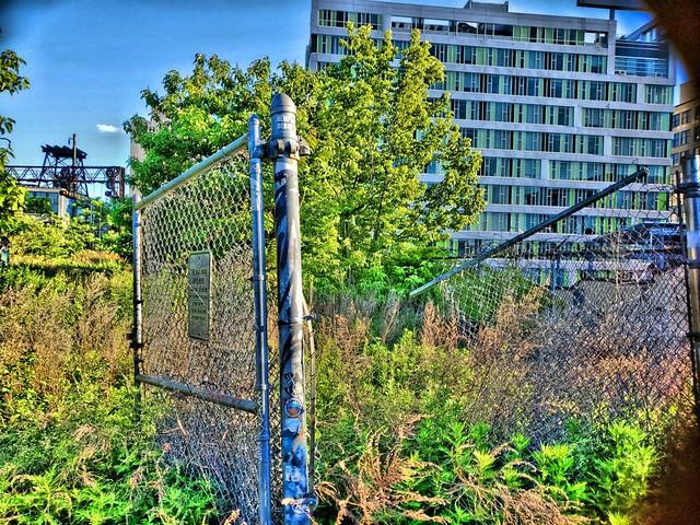 Unfinished Rail Park
