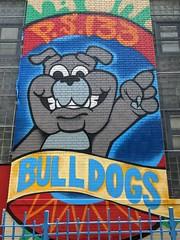 PS 133 Bulldogs