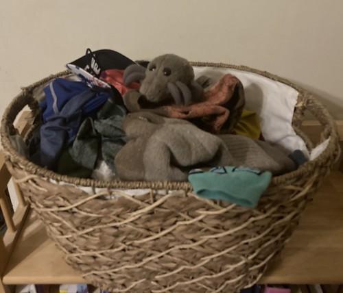 Laundry Mite