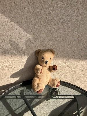 Teddy bear on the balcony