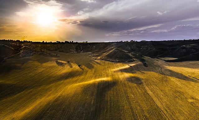 Dunes of crops