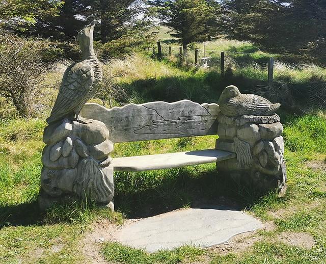 Eider Duck Themed Bench - Forvie Nature Reserve
