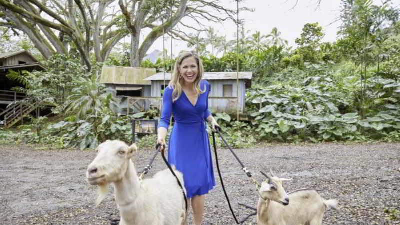 Pascale Hutton goats scene