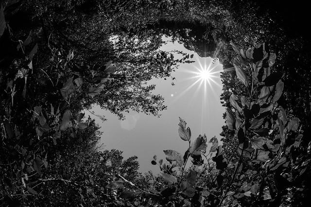 12mm Fisheye Reflection