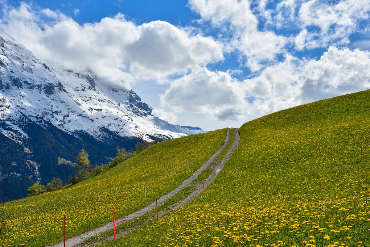Grindelwald-(29)